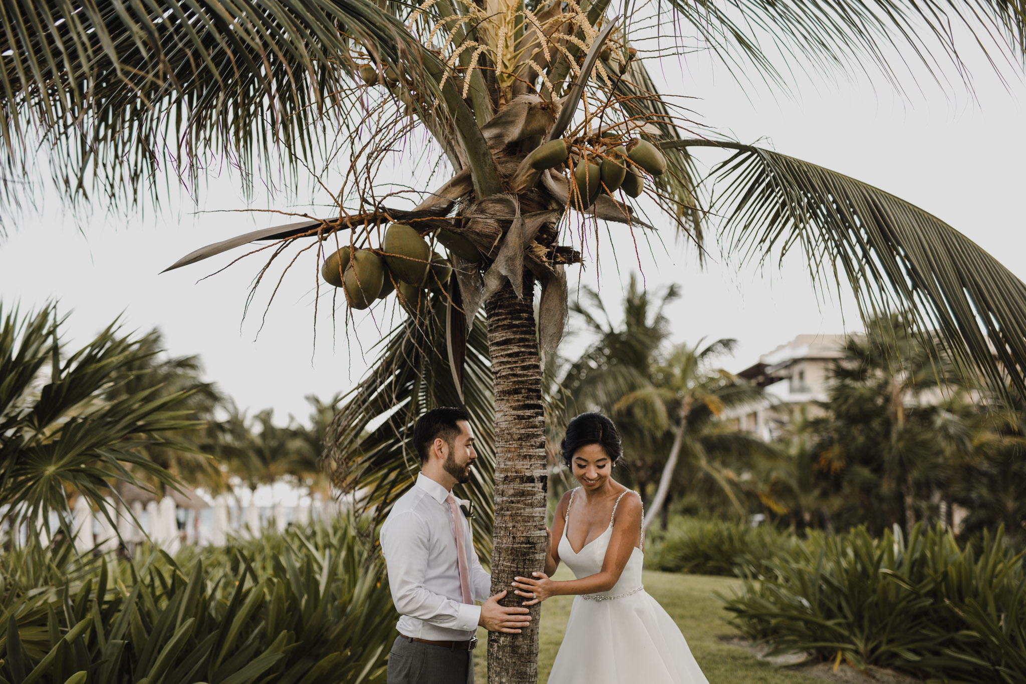 Cancun Mexico Wedding - hugging palm trees