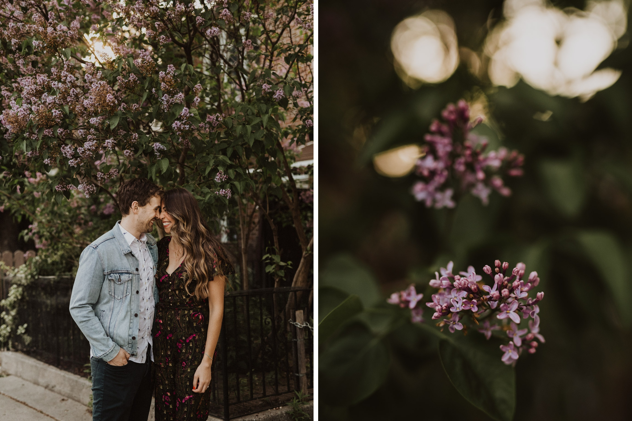 Purple flowers. Kensington Engagement. Jennifer See Studios.