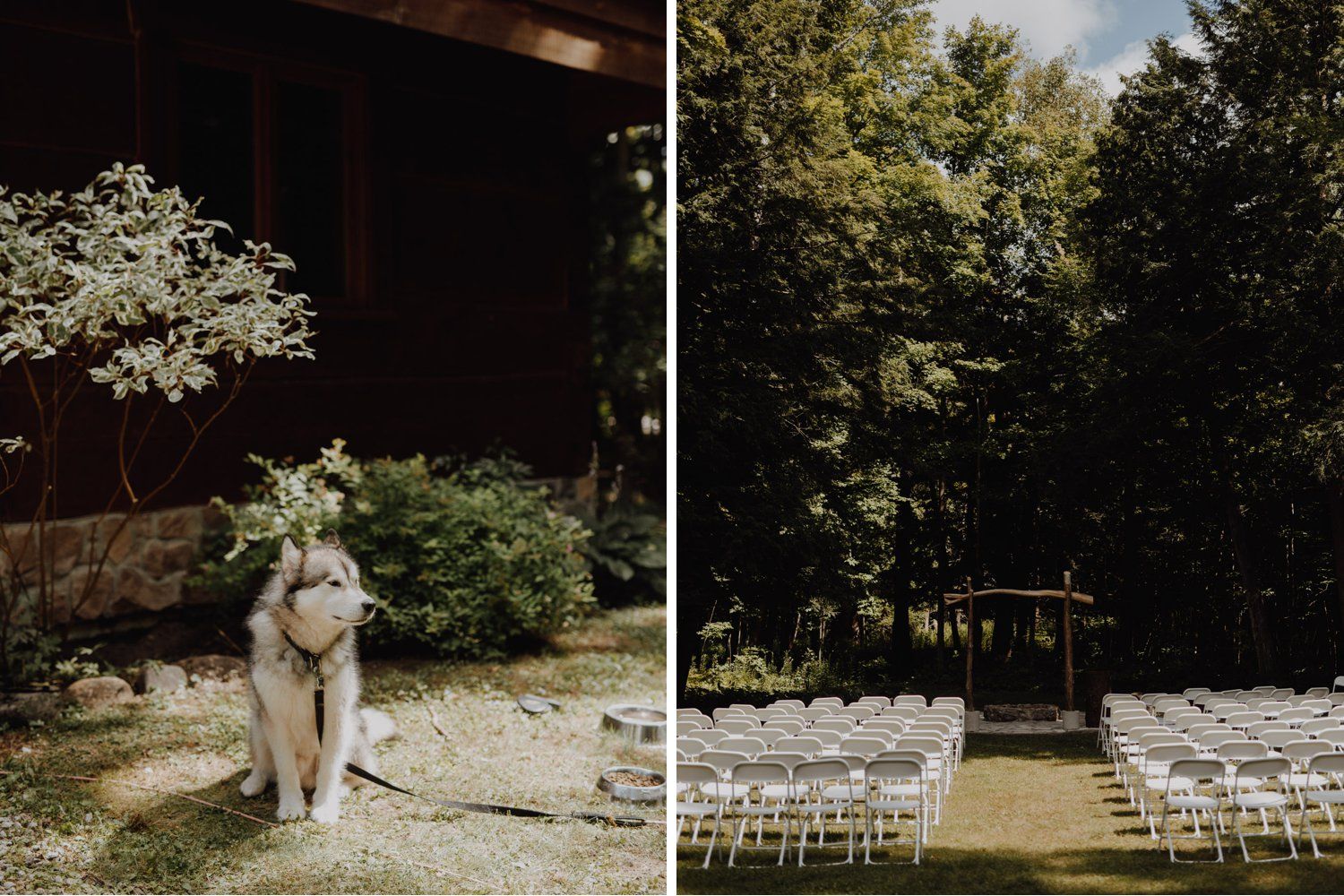 Outdoor Camp Wedding - dog friendly ceremony