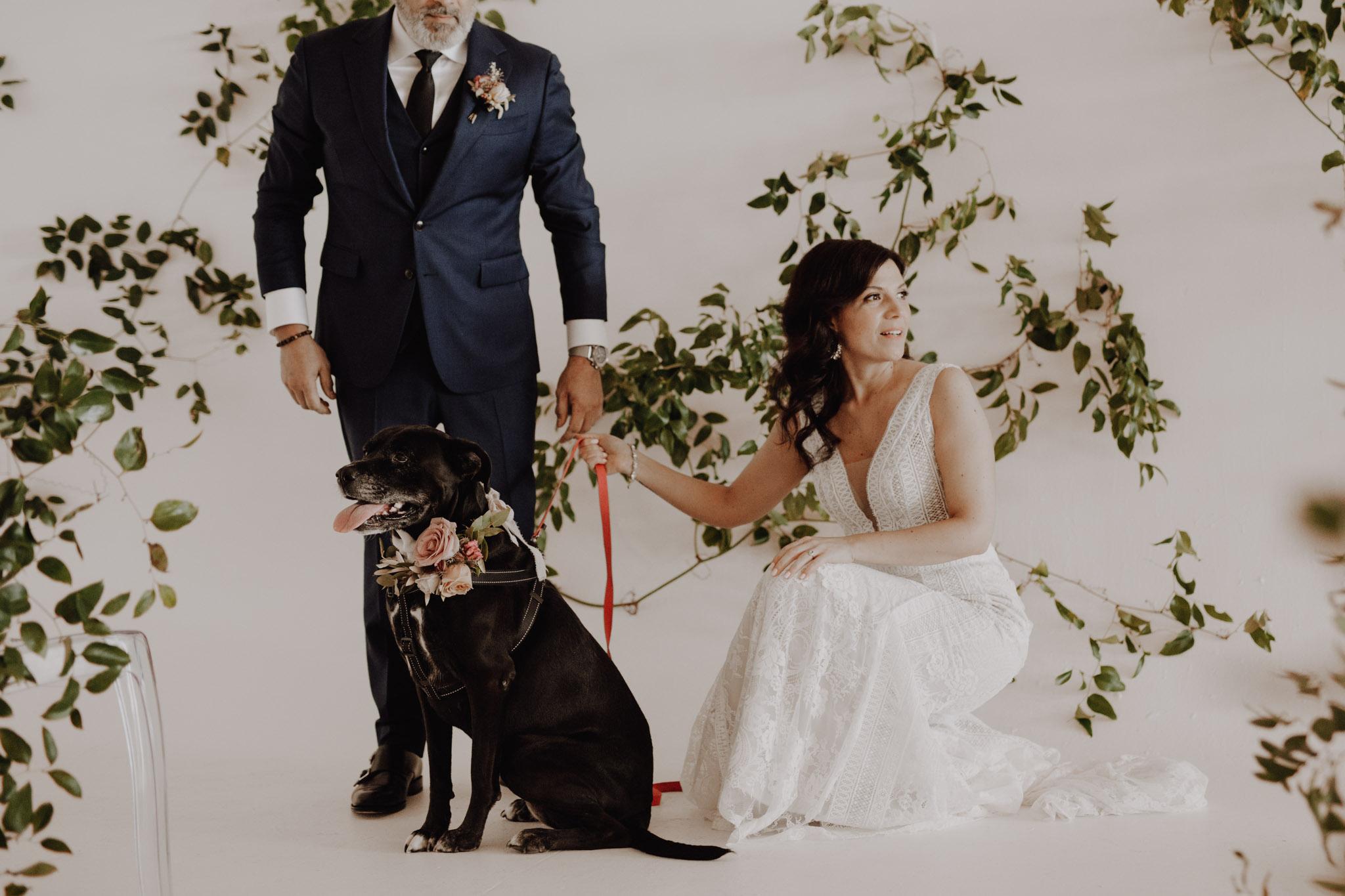District 28 Wedding Toronto - Bride groom & dog