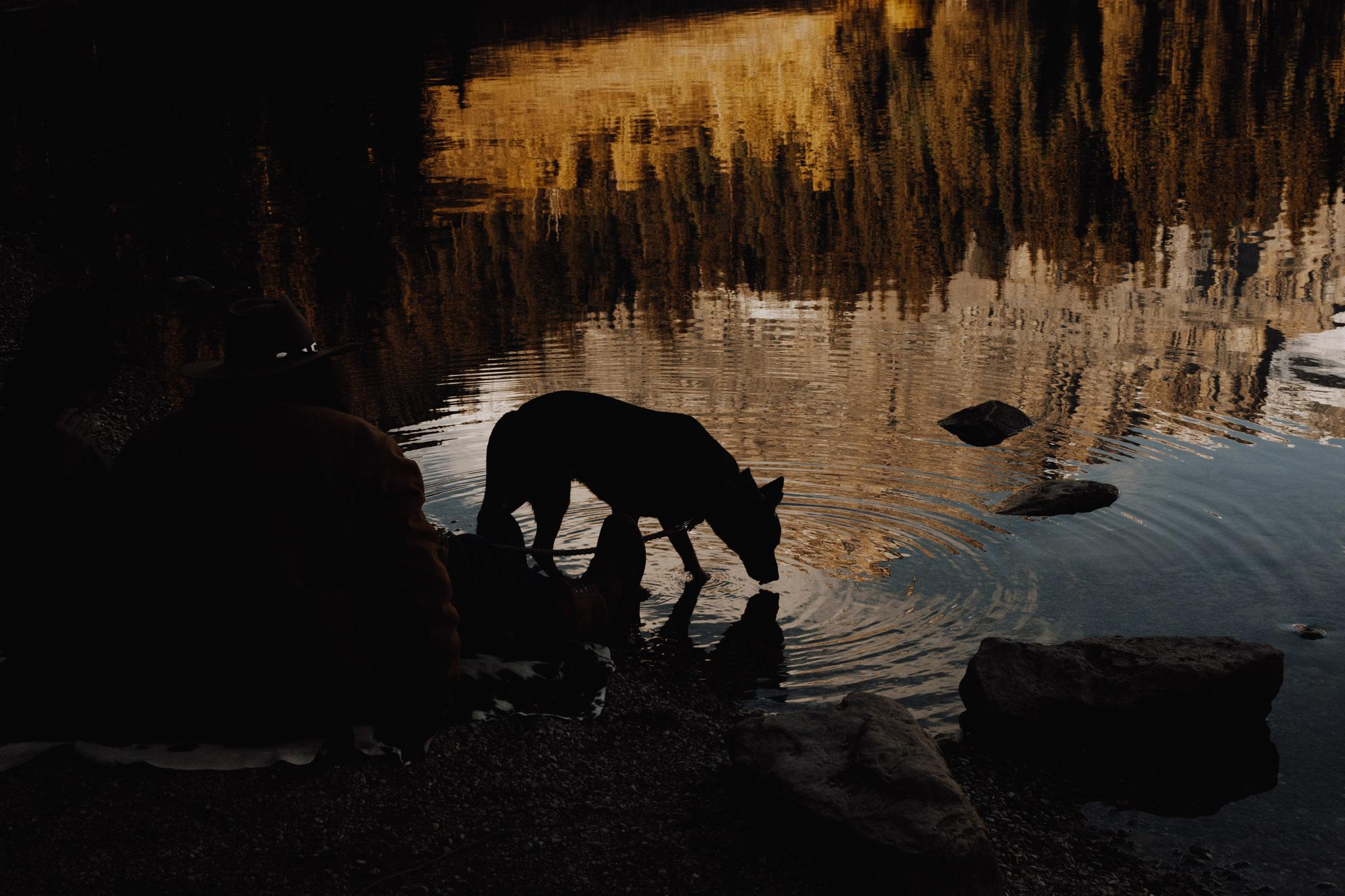 Emerald Lake - dog silhouette in lake