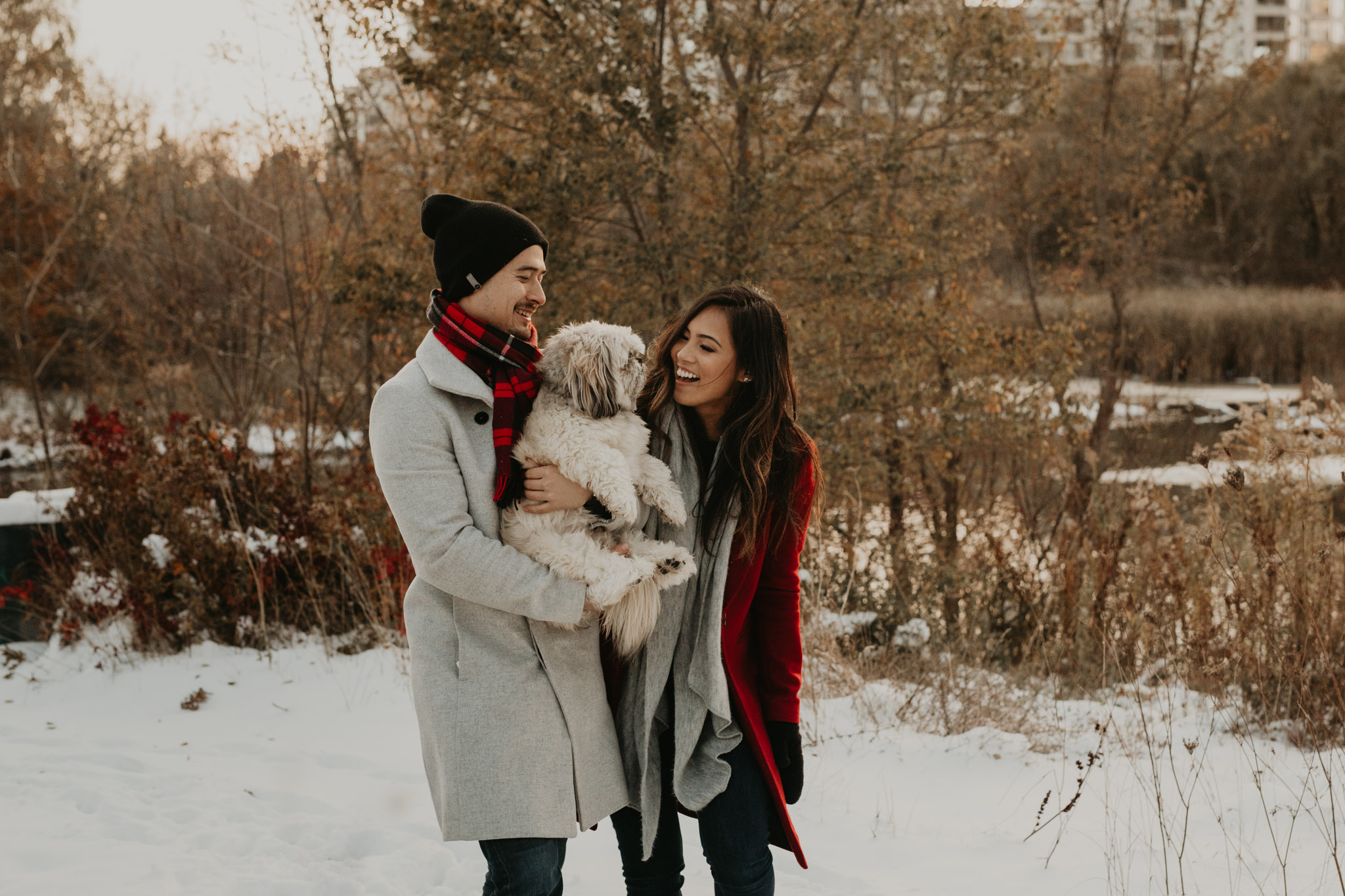 Winter Engagement in Toronto - couple laughing with dog in snowy park
